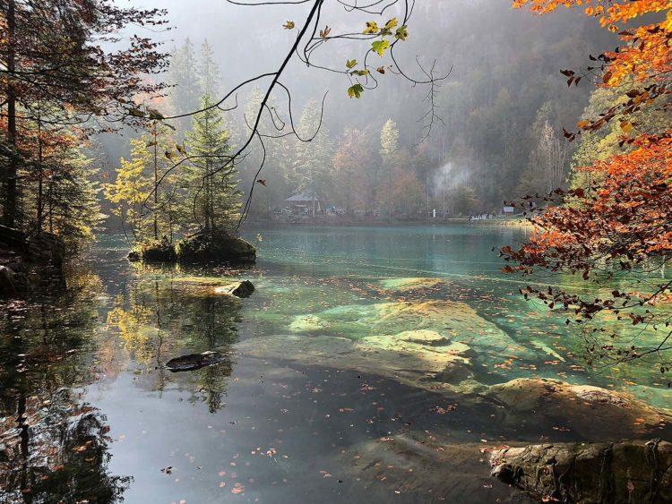 blausee schweiz berner oberland