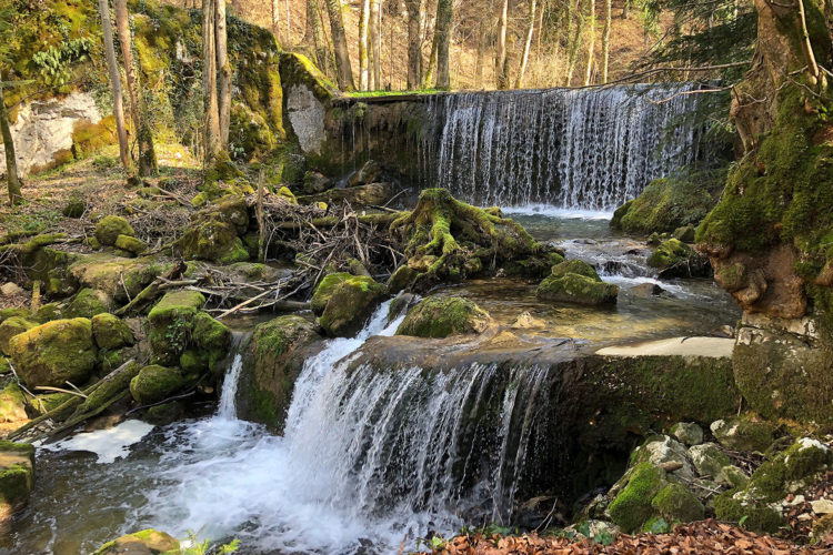 holzweg thal naturpark soloturn
